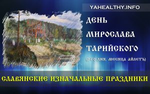 День Мирослава Тарийского