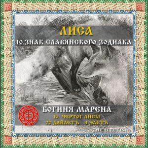 Чертог Лисы – 10 знак славянского зодиака (садиака)