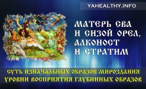 Матерь Сва и Сизой Орел, Алконост и Стратим