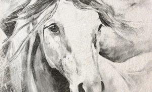 14. Чертог Коня