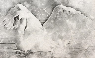 4. Чертог Лебедя