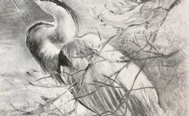 8. Чертог Бусла (Аиста)