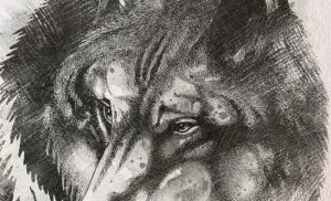 9.Чертог Волка