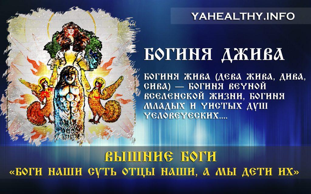 БОГИНЯ ДЖИВА (Дева Жива, Дива, Сива) — Богиня Вечной Вселенской Жизни, Богиня младых и чистых Душ Человеческих.