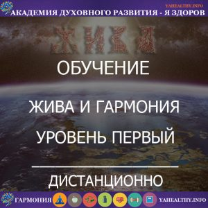 """""""Жива и Гармония — Уровень 1"""""""