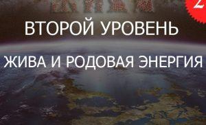 2.2«Жива и ДУХовный Огонь РОДовой Энергии — Уровень 2»