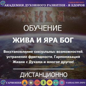 Жива и Яра Бог - Уровень Практикующий