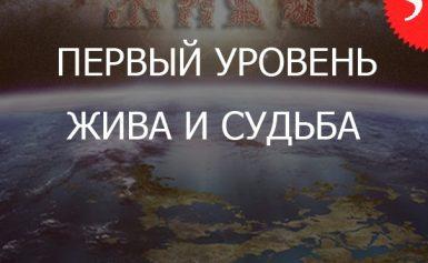 5.1«Жива и Судьба — Уровень Практикующий»