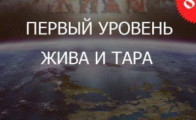 8.1«Жива и Тара — Уровень Практикующий»