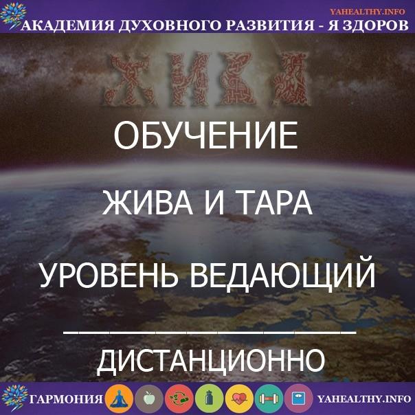 8.2«Ведающий Жива и Тара»