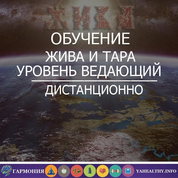 Славянские практики обучение