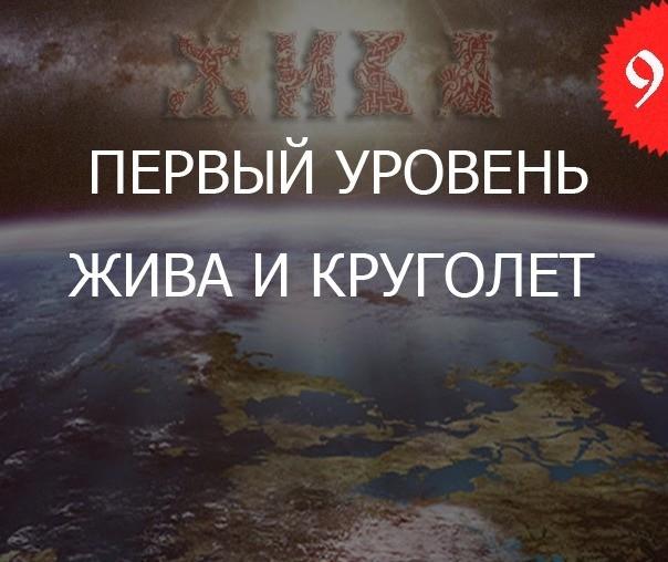 9.1 «Жива и Круголет — Уровень Практикующий»