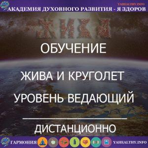 9.«Ведающий Жива и Круголет»