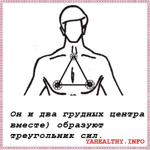 Он и два грудных центра (вместе) образуют треугольник сил;