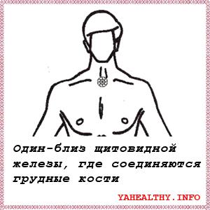 Один - близ щитовидной железы, где соединяются грудные кости;
