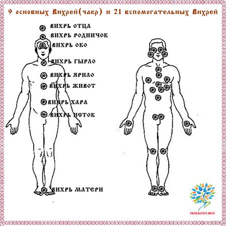 Известно девять основных Вихрей (чакр)